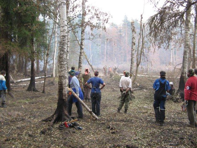 Des volontaires près de Roshal (district de Shatursky, region de Moscou) voyant bruler la forêt, nettoyant les débris, éteignant les petits feux