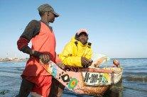 Pêche intensive : comment l'Europe affame l'Afrique
