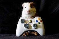 Les jeux vidéo profilent leurs utilisateurs