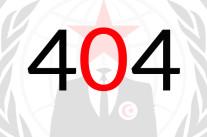 Anonymous promet une Révolution 404